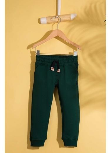 U.S.Polo Assn. Pantolon Yeşil